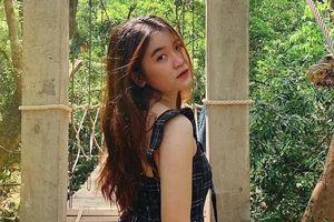 Khu trò chơi trên cây dài nhất Việt Nam, hấp dẫn du khách ưa mạo hiểm