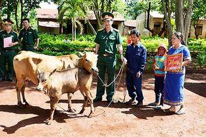 Trao bò tặng hộ nghèo vùng biên Ia Grai
