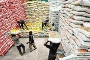 Đôi nét về thị trường gạo Senegal
