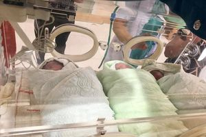 Cặp vợ chồng đất Cảng sinh 3, đủ trai và gái khiến dân tình phát sốt