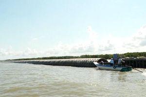 Nghị quyết 120/NQ-CP – Quyết tâm hành động để đồng bằng sông Cửu Long cất cánh