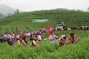Thái Nguyên: Các hợp tác xã chú trọng bảo vệ môi trường