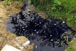 Ninh Bình: Xử phạt doanh nghiệp 140 triệu đồng vì xả thải chưa qua xử lý ra môi trường