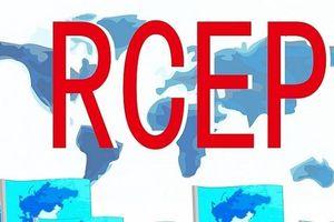Hy vọng hoàn tất hiệp định RCEP vào cuối năm nay và ký kết vào năm 2020