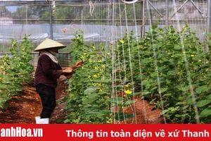 Kết nối cung cầu sản phẩm nông sản, thực phẩm góp phần phát triển nông nghiệp hiệu quả
