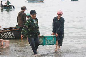Biển Nam Trung bộ đối diện nạn cạn tài nguyên, ô nhiễm