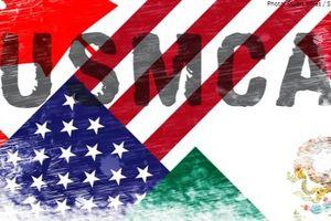 Mexico phê chuẩn thỏa thuận thương mại mới với Mỹ, Canada