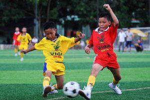Nhiều cầu thủ dự cúp Báo Nghệ An sẽ là nòng cốt của U11 SLNA dự giải toàn quốc