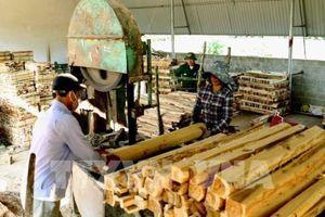 Lâm sản xuất siêu trên 4 tỷ USD