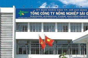 TPHCM: Cách chức Tổng Giám đốc SAGRI đối với ông Lê Tấn Hùng