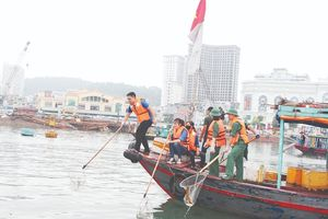 TP. Hạ Long: Chung tay bảo vệ môi trường