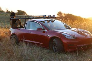 Cô gái chơi trội, 'phá' Tesla Model 3 mới tinh biến thành xe bán tải chất lừ