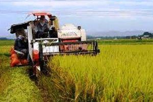 Nghệ An: Kỷ luật 2 cán bộ huyện 'ăn chặn' tiền của nông dân
