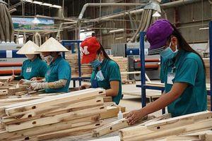 Giảm thiểu rủi ro mới phát sinh cho ngành gỗ Việt Nam
