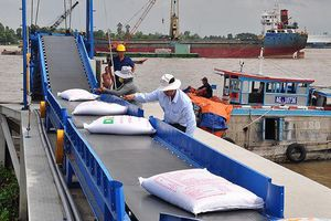 Bộ Công Thương tổ chức Hội nghị sơ kết tình hình xuất khẩu gạo 6 tháng đầu năm 2019 và bàn giải pháp thúc đẩy xuất khẩu các tháng cuối năm