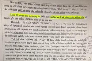 Tranh cãi thương hiệu bảo hộ 'Nhôm Việt Pháp': Viện khoa học Sở hữu Trí tuệ lên tiếng