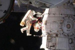 'Nhiệm vụ bất khả thi': thu thập tinh trùng trên trạm không gian