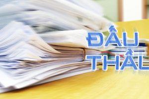 Hiệu lực của hồ sơ dự thầu và bảo đảm dự thầu
