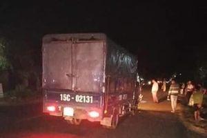 Quảng Trị: Hai anh em tử vong sau tai nạn với xe tải