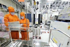 Xuất khẩu công nghệ thông tin của Hàn Quốc sụt giảm 7 tháng liên tiếp