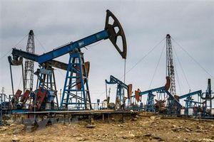 Giá xăng, dầu (22/6): Tiếp tục tăng giá