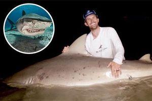Bắt cá mập quái vật nguy hiểm nhất thế giới nặng gần 2 tạ ở Mỹ