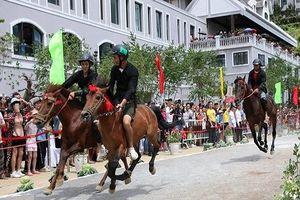 Sa Pa (Lào Cai): Khai mạc Giải đua 'Vó ngựa trên mây'