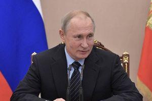 Tổng thống Putin đình chỉ tất cả các chuyến bay đến Gruzia
