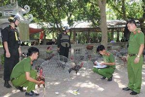 Hàng trăm công an bắt 'sới gà' trong ngôi nhà hoang ở Hòa Bình