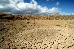 Việt Nam có 1,3 triệu ha đất có nguy cơ bị suy thoái