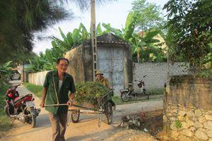 Xã Diễn Xuân tiếp tục phát triển kinh tế xã hội từ thành quả xây dựng nông thôn mới