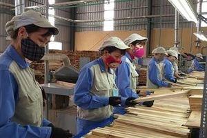 Nhiều mối lo khi FDI từ Trung Quốc vào ngành gỗ tăng vọt