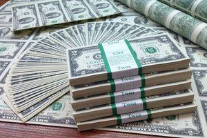 Tỷ giá ngoại tệ 23.6: USD chợ đen 'loay hoay' vùng giá thấp