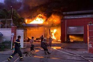 Long An: Cháy công ty sản xuất vỏ cơm hộp, thiệt hại gần 30 tỉ đồng