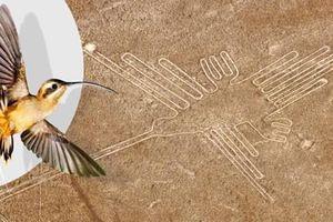 Cực sốt: Đường kẻ Nazca cuối cùng đã được giải mã?