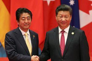 Đại sứ Trung Quốc tại Nhật Bản: Chủ tịch Tập Cận Bình sẽ tới Tokyo vào mùa anh đào tới