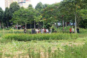 Thanh Hóa: Phát hiện người chăm sóc cây cảnh gục chết trong công viên