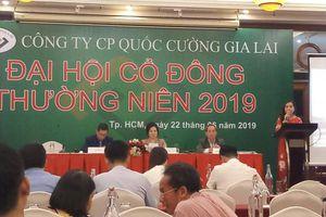 Nóng vụ đất Phước Kiển, Nhà Bè tại đại hội cổ đông của Quốc Cường Gia Lai