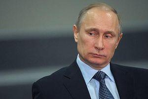 Tổng thống Putin: Nga không có kế hoạch chuyển giao đảo cho Nhật Bản