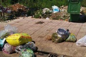 TT-Huế: Vứt rác ra đường phố có thể bị phạt đến 7 triệu đồng