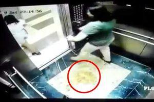Vụ hai người phụ nữ 'tiểu bậy' trong thang máy chung cư: Xử phạt chủ hộ 2 triệu đồng