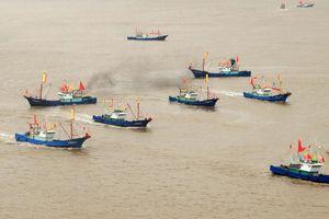 Mỹ: Tàu dân quân biển Trung Quốc có hầm đạn, thường hoạt động ở Trường Sa
