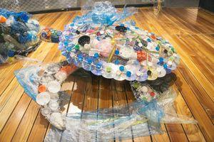 Con người ở đâu trong 'hành tinh của nhựa'?