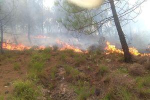 Rừng thông ở Hà Tĩnh cháy ngùn ngụt, hàng trăm người dập lửa