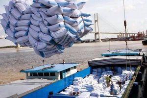 Trung Quốc tồn kho lớn, xuất khẩu gạo Việt Nam gặp bất lợi về thị trường