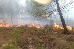 Rừng thông ở Hà Tĩnh cháy đùng đùng, hàng trăm người tham gia dập lửa từ 13h đến nay
