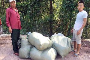 Quảng Ninh: Tiêu hủy 80 nghìn con cá trê giống nhập lậu