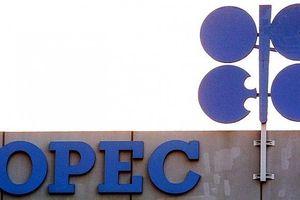 OPEC sẵn sàng cho cuộc họp quan trọng đầu tháng 7 và quyết định cắt giảm sản lượng dầu
