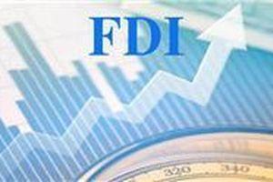 Thu hút FDI 6 tháng đầu năm 2019 đạt 18,47 tỷ USD