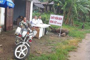 Phát hiện ổ dịch tả lợn Châu Phi đầu tiên ở tỉnh Lâm Đồng